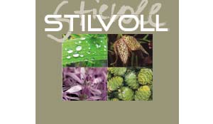 stilvoll - Blumendekoration